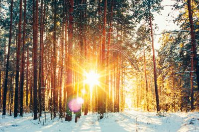 گالری تصاویر تقویم فصل زمستان
